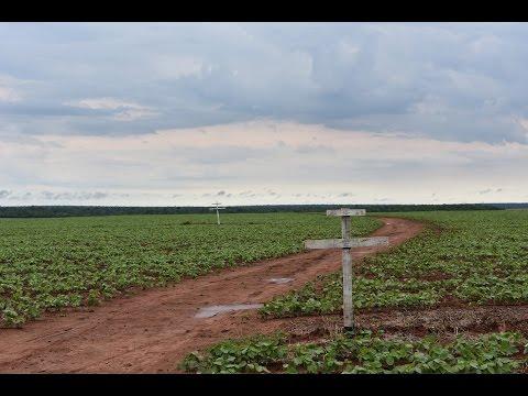 La metamorfosis del Paraguay (documental histórico)