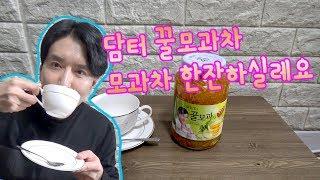 담터 꿀 모과차 리뷰 와 시식 저와 차 한잔하실레요 김…