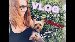 VLOG стрижка собаки PETSMART / магазин TARGET / СЕКОНД ХЕНД В США