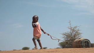 GLOBALink | 2.1 mln Kenyans facing acute food insecurity as drought lingers