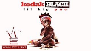 "Download Kodak Black ""Vibin In This Bih"" Feat. Gucci Mane (WSHH Exclusive - Official Audio)"