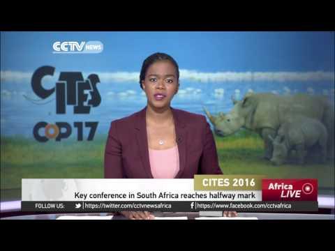 Johannesburg CITES conference reaches halfway mark