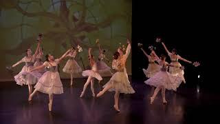 Trailer: Discover Dance! Goh Ballet