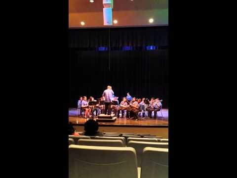 John P Freeman Optional School Band
