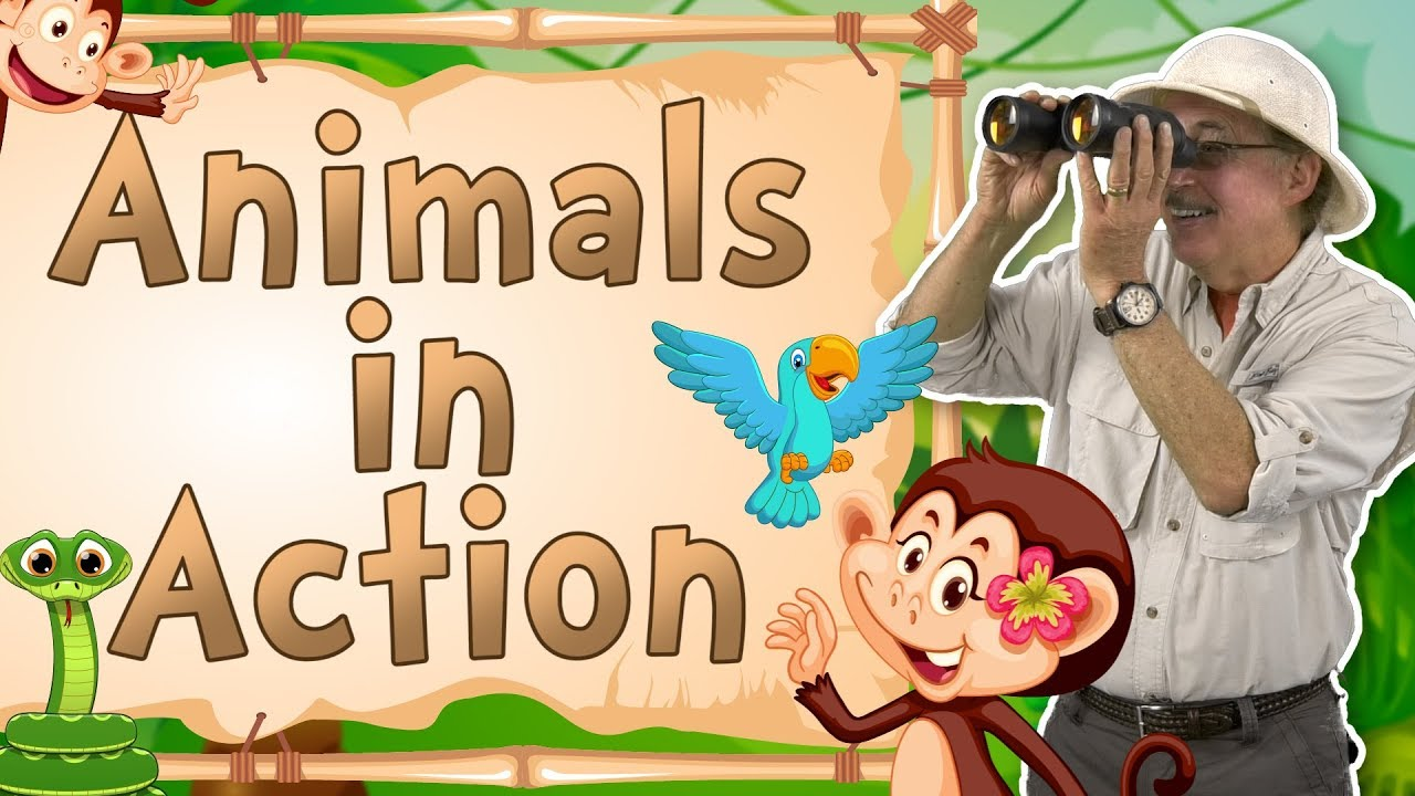 Animals In Action Movement Song For Kids Jack Hartmann Youtube