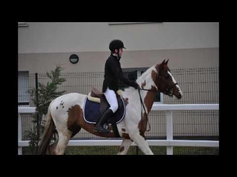 DVD CSO CEM 16 17    5   Roziere   Thierville   Mourmelon