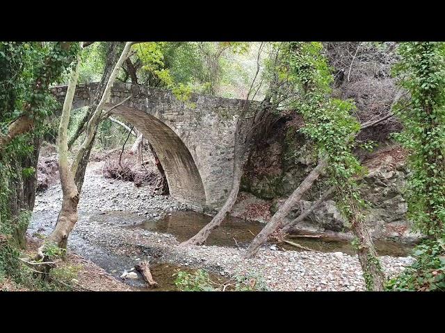 Safari cyprus #safari#akamas#troodos#bluelagoon#cyprus #wew.jimmysjeepadventures.com