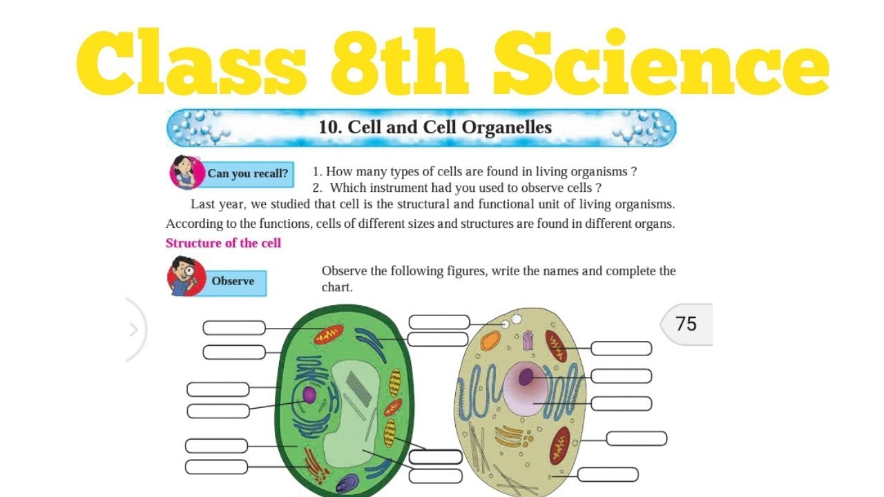 part 1 class 8th science cell and cell organelles  [ 1280 x 720 Pixel ]