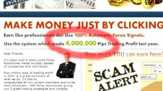 Forex SCAMs Due Dilligence Video. Scam Signs. Watch out!