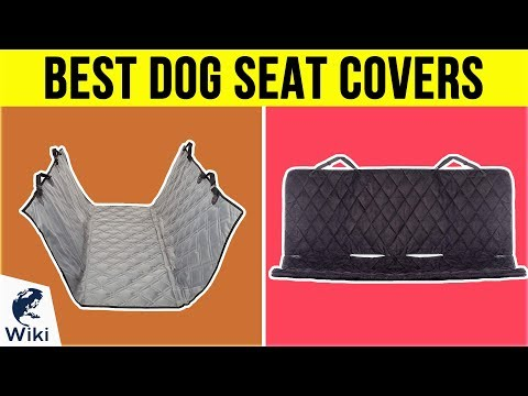 10-best-dog-seat-covers-2019