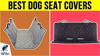 10 Best Dog Seat Covers 2019