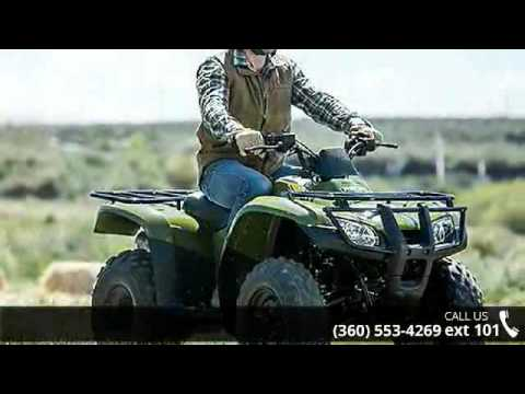 2016 Honda FourTrax Recon ES - Lifestyles Honda - Mount ...