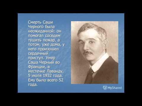 Саше Черному. К 135-летию со дня рождения