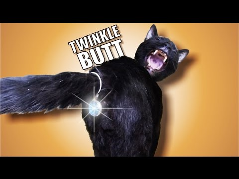 Talking Kitty Cat 42 - Twinkle Butt