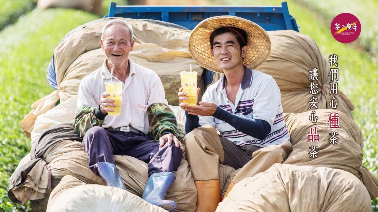 《茶の魔手》名山茶廠-1090616現採茶菁記實