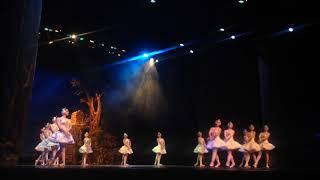 55 Aniversario de la Escuela de Danza Gloria Campobello