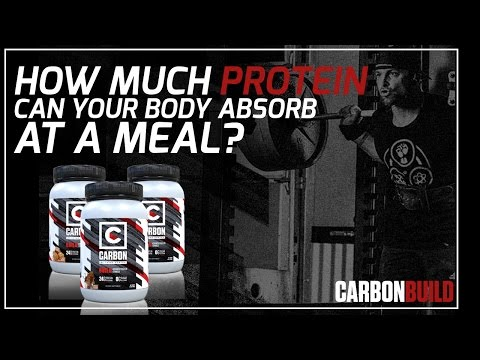 How Much Protein Can Your Body Absorb per Meal?