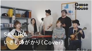 SAKURA いきものがかり Cover