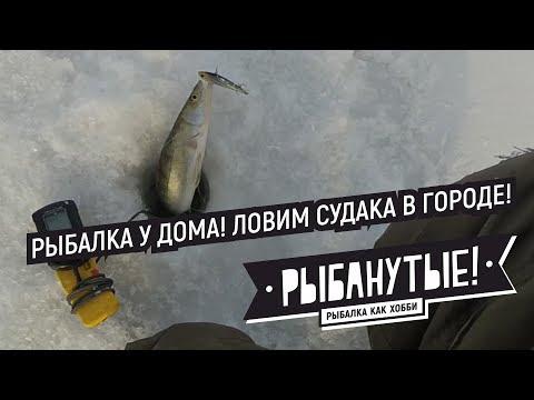 Городской судак! Зимняя рыбалка у Аквапарка в Новосибирске