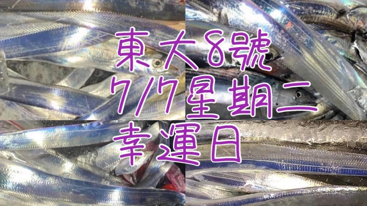 7/07星期二東大8號釣況之漁獲分享 感謝 琪琪 讓我們東大8號 漁獲可以讓大家看到 感謝 同赤馬888(深奧漁港)
