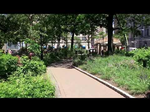 summer in Battery Park, New York (6-9-17)