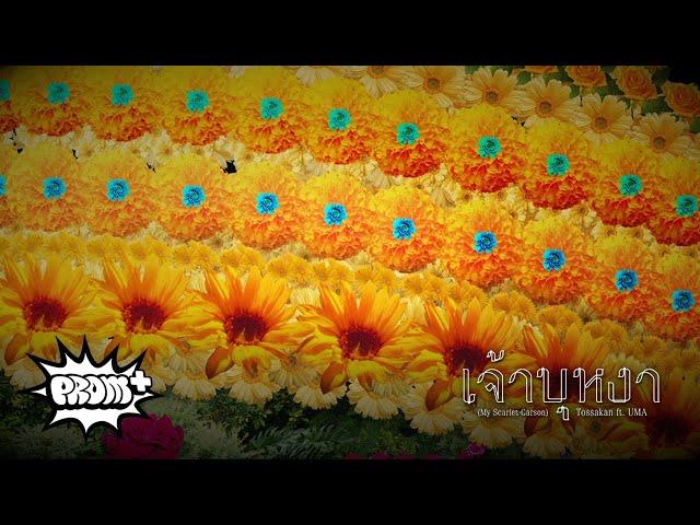 TOSSAKAN - เจ้าบุหงา Feat. UMA [Teaser 8/9]