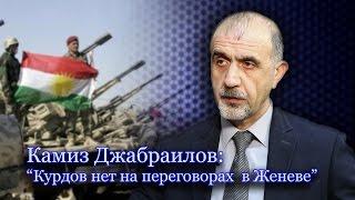 """""""Война в Сирии: курдский взгляд"""""""