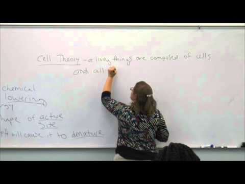 Broward College North Campus | BSC1005 | Review Video | Sept 28 2015