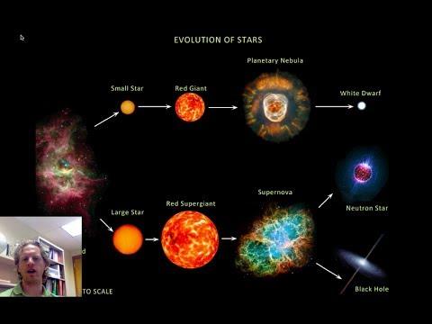 White Dwarfs, Neutron Stars, and Black Holes
