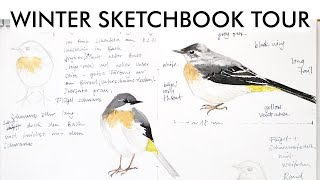 Winter Sketchbook Tour January February 2021   Birds and more