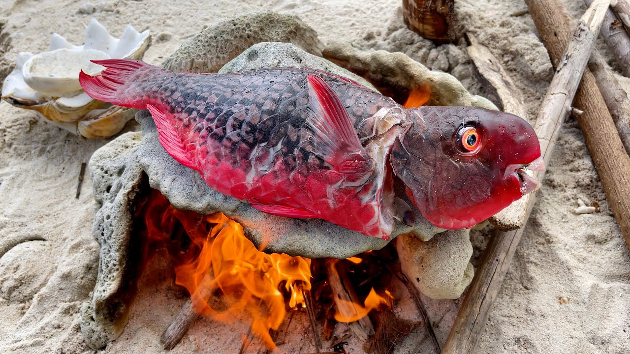 Parrot Fish Cooking on HOT ROCKS!! Delicious Seafood Spear Catch and Cook
