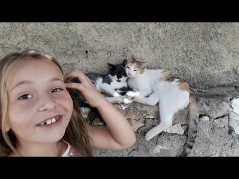 Bahçede Prenses kendine arkadaş buldu, Çocukların Eğlenceli Videoları