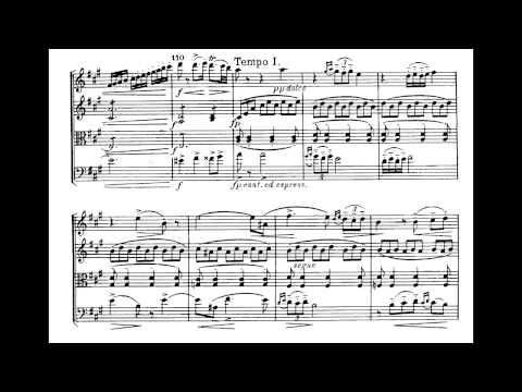 Клип Borodin - Notturno