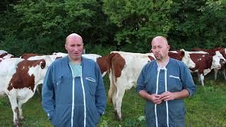 Pour votre élevage bovin lait