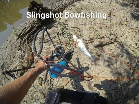 an overview of bowfishing Summary bowfishing has long been used as a means of gathering food for generations, and the fact that it has become a method of recreational fishing only drives the.