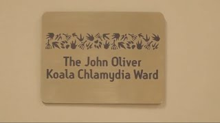Irwins thank Russell Crowe and John Oliver for koala chlamydia clinic