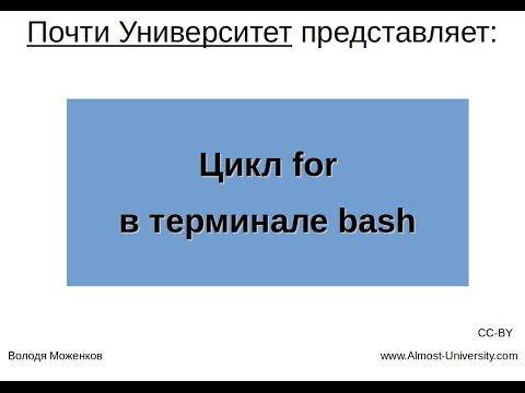 Цикл For в терминале Bash