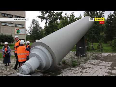 День работников леса отметили в Светогорске