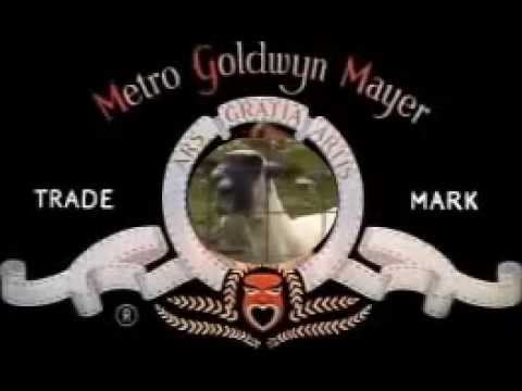 MGM (Metro Goat Mayer)