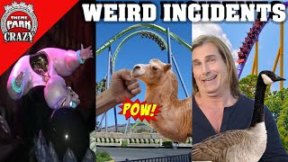 10 WEIRD Amusement Park Incidents (Theme Parks Included) thumbnail