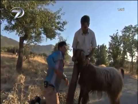 28 Eylül 2013 Kanal 7 de Gece gündüz programı Kürşat Sunuyor DENİZLİ