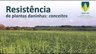 Resistência de plantas daninhas: conceitos