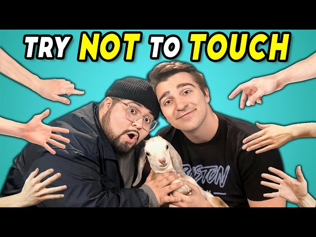 Try Not To Touch Challenge (React)