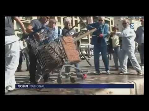 Nettoyage du vieux-port de Marseille - France 3   Soir 3 national