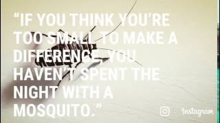 """If you think you're too small to make a difference, you haven't spent the night with a mosquito."""""""