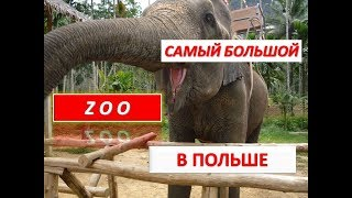 Рай для животных. Зоопарк Гданьск-Олива/ Zoo Gdańsk – Oliwa