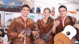 Trío Alba Huasteca - La Fiesta De Amatlán