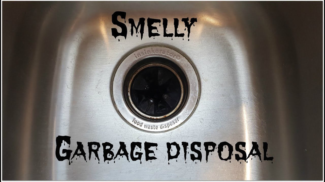 diy clean and freshen your garbage disposal - Garbage Disposal Cleaner