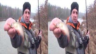Ловля судака и окуня.Отводной поводок.  3D видео.Sony HDR-TD10E