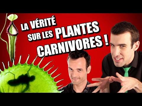 IDÉE REÇUE #20 : Les plantes carnivores (feat. Fabien Olicard)
